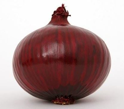 Picture of Produce: Onion, Red
