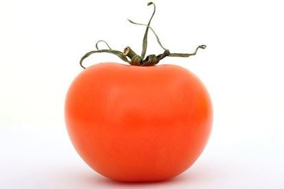 Picture of Produce: Tomato